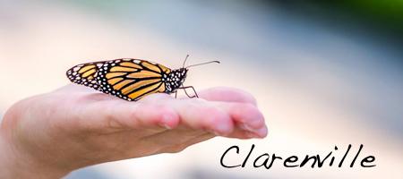 register_clarenville